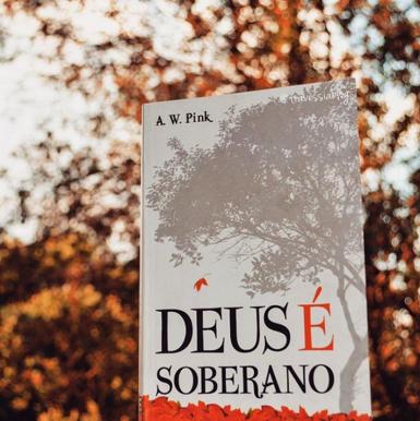 livro__soberano_pink